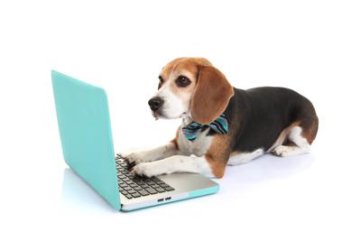 DIY Digital dog learning computer