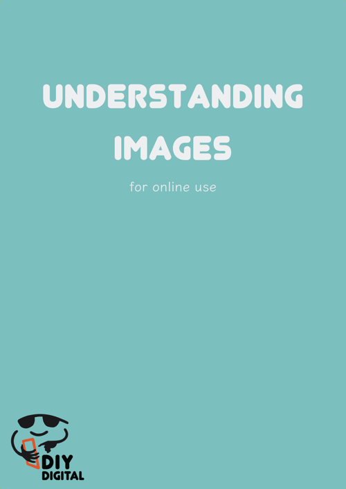 Understanding Images cover