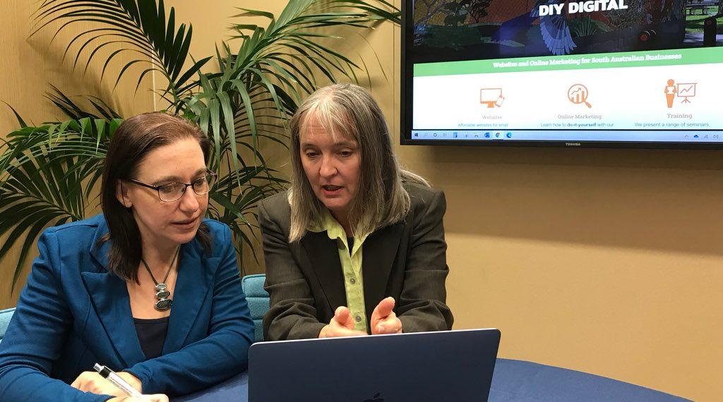 Fiona DIY Digital consultation